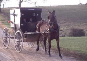 Amish Farm Field Trip